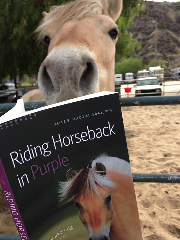 Reviews of Riding Horseback in Purple